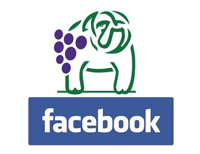 fabiano-dalpra-bulldogs-facebook